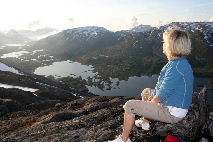 Utsikt frå Viahøi mot Hamsedalen